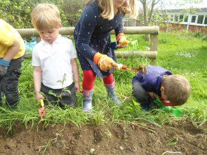 Gardening club 6